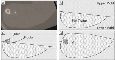 Multilayer geometrically accurate tissue phantoms for Raman spectroscopy